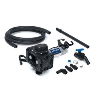 Sotera Series 400B Dual Diaphragm Chemical Transfer Pump 12V DC