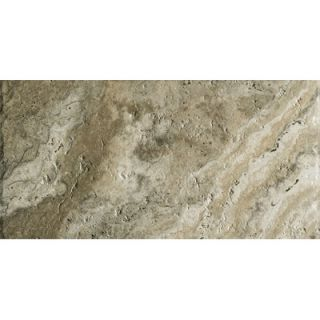 Marazzi Archaeology 12 x 24 ColorBody Porcelain in Crystal River