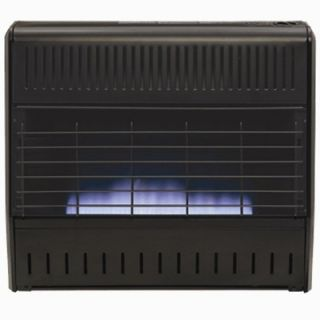 World Marketing Blue Flame Dual Fuel Garage Heater