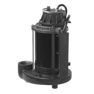 Wayne Water Systems 1/3 HP Switch Genius Switch Technology Sump Pump