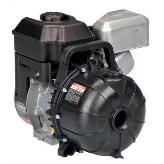 Pacer Pumps 2, 200 GPM EconoAg Water Pump with 5.5 HP Briggs