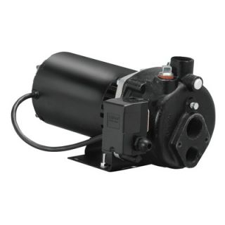 Wayne Water Systems 1/2 HP Cast Iron Convertible Well Jet Pump