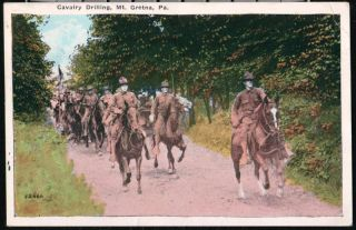 Mount Gretna PA US Cavalry Drilling Vintage Military Horse Postcard