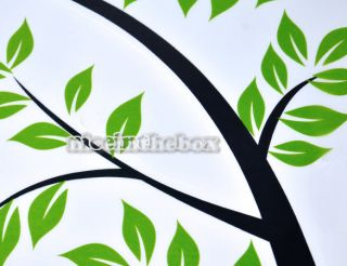 Green Sticker Bodhi Tree Decoration Wall Paster Environmental