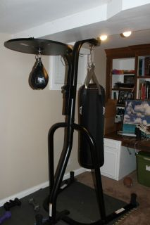 Speed Bag and Heavy Bag with Stand Everlast