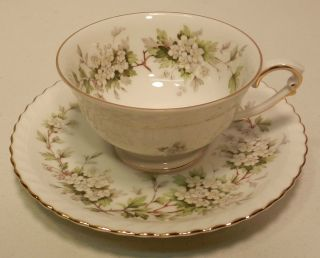 Hawthorn Krautheim Franconia Selb Bavaria Germany Cup and Saucer Set
