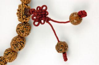 Mala Jing Gong Seed Prayer Beads Buddhist Nut Jewelry
