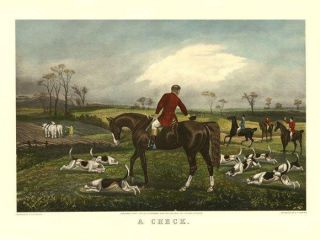 Fox Dogs Horse Hunting Scene Riders Hounds Repo Poster