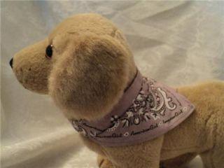 American Girl Doll Kailey Sandy Pet Dog Golden Retreiver Animal
