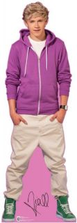 One Direction 1D Niall Horan Lifesize Cardboard Standup Standee Cutout