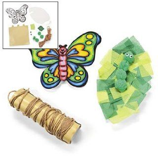 Color Your Own Butterfly Life Cycle Craft Kit   Curriculum