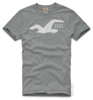 Hollister HCO Mens Applique Print Graphic Tee T Shirt