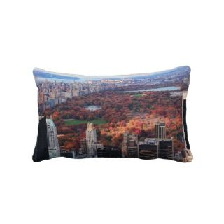 view above Autumn in Central Park 01 Pillows
