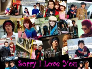 AM SORRY I LOVE YOU Korean Drama (Complete 9 Disc Set ) With English