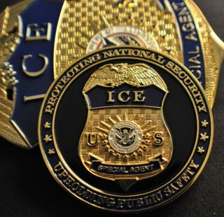 Ice US Immigration Customs Enforcement Badge Challenge Coin