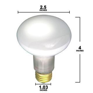 30W 120V R20 Frosted E26 Medium Base Incandescent Light Bulb