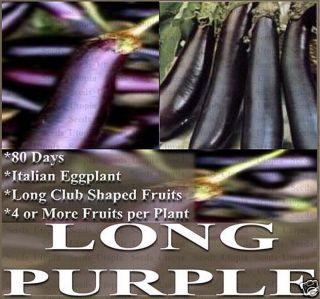 Eggplant Seeds Organic Italian Heirloom Long Purple