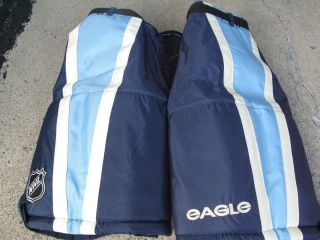 JASON WILLIAMS Eagle Blue Pro 50 Pittsburgh Penguins Game NEW Hockey