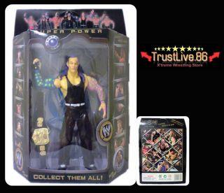 WWE Jeff Hardy Action Figures Toy Wrestling Belt BNIB