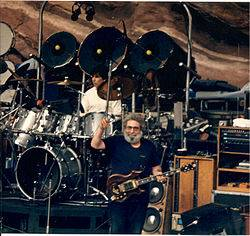Grateful Dead Concert Shirt Vintage 1980's Sz Large Ed Donahue Roses Parking Lot