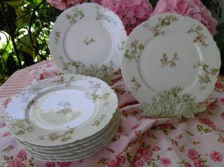 7 Haviland Schlieger The Frontenac France Limoges Salad Plates Pink Flowers