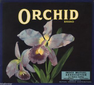 Orange County Crate Label Vintage Orchid La Habra 1930s