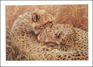 Alan Hunt British Love Bites Leopards Signed Lithograph Art