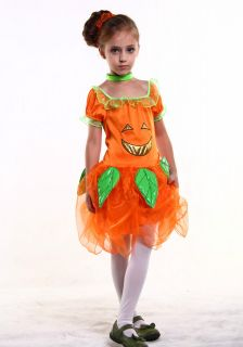 New Light Up Pumpkin Fairy Girl Kids Child Halloween Costume Set