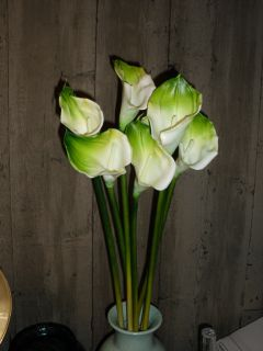 Touch Silk Flower White Green Calla Lilys Large Sgllong Stem