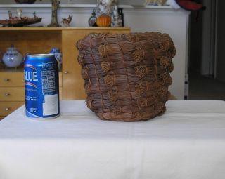Antique Circa 1900s Long PINE NEEDLE Miwok Native American Coiled