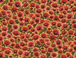 Quilt Quilting Fabric Firewheel Flower Floral Red Green Cotton New BTY