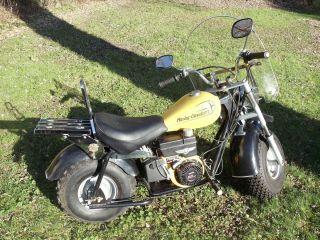Minibike Mini Baja Custom Mini Bike Harley Scooter Motorcycle