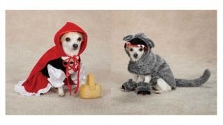 Little Red Riding Hood & Big Bad Wolf Costumes for Dogs   Dog Costume