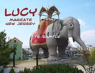 NJ, Margate   LUCY THE ELEPHANT   Fridge Magnet