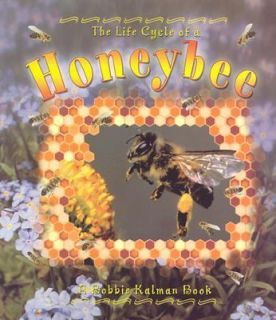 live honey bees