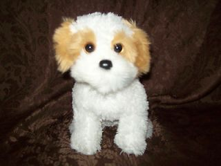 2009 Ty White Brown Shih Tzu Puppy Dog Plush Soft Toy Stuffed Animal