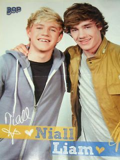 One Direction Best Buddies Liam Payne + Niall Horan 16x20 Poster bw
