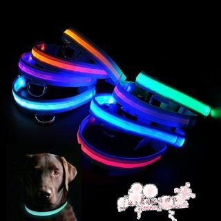 Size&8Color LED Flashing Lighting Safety Pet Dog Nylon Flat Collar
