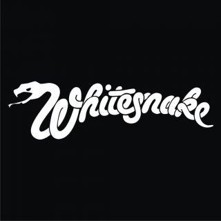 Whitesnake (shirt,hoodie,sweatshirt,babydoll)