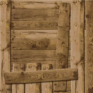 Wood Shed Door 12x12 Scrapbook Paper Karen Foster Design Barndance