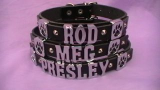 Personalised Dog Collar   Chrome Letters