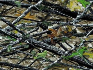 water transfer printing film hunter woodlands camo el paso powder