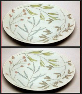 Rosenthal China GERMANY AQUARELL Mod Leaf Set 2 Plates