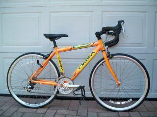 Youth Road/ Triathlon Bike 24 Inch Wheels, 41 cm Frame Special Order