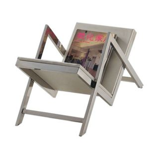 Armen Living Riga Magazine Stand   Stainless Steel with Glass Multicolor
