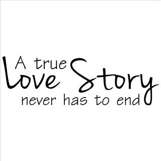 A True Love Story Never Has To End Vinyl Wall Art Lettering (12.5 inches high x 40 inches wideImage dimensions 12.5 inches tall x 18 inches wide )